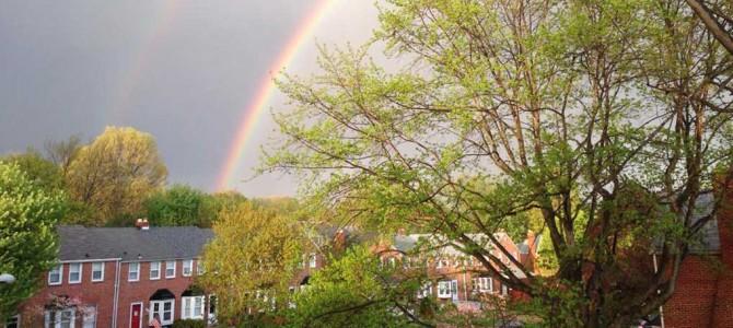 Houses rainbow